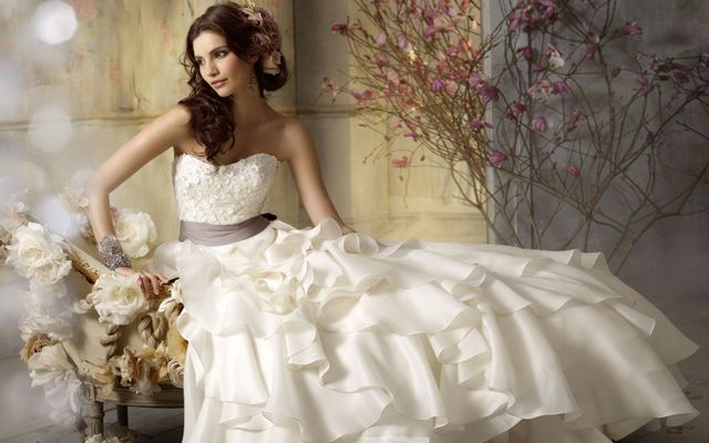 beautiful big wedding dresses