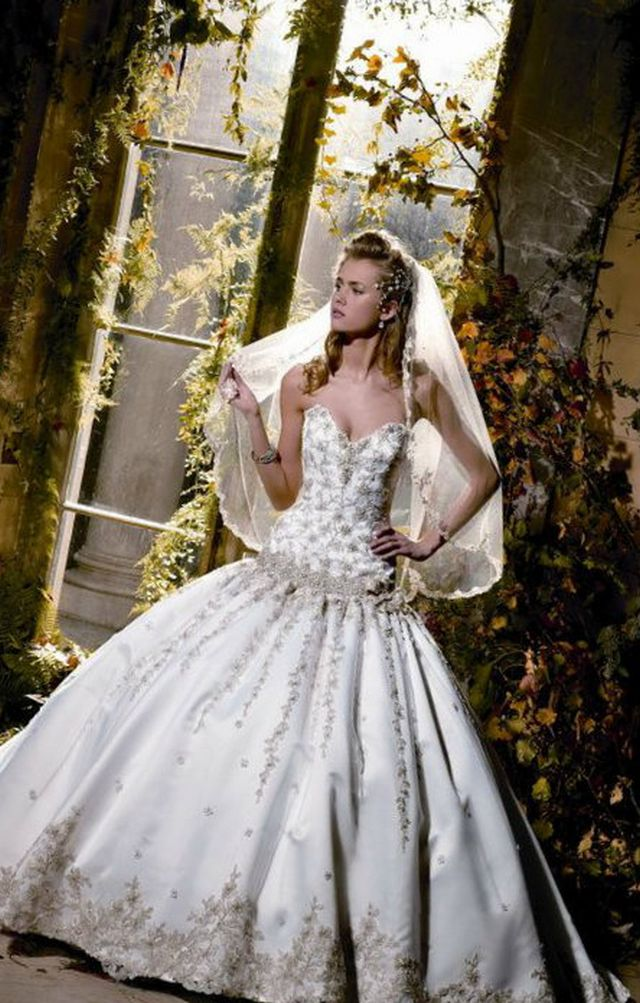 big puffy beautiful wedding dresses