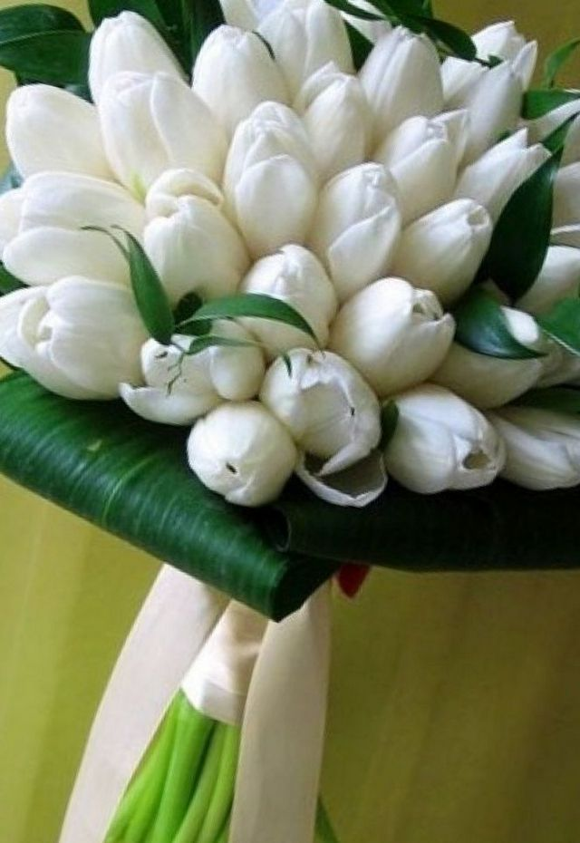 bridal bouquet of tulips