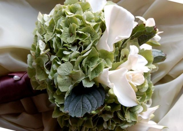 bridal bouquet white hydrangea