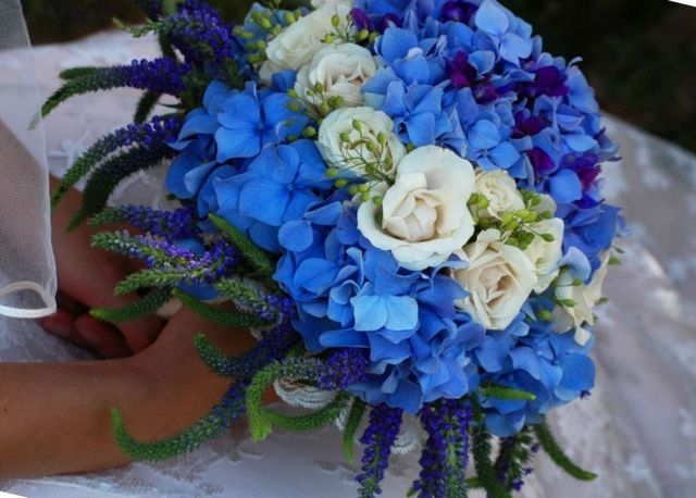 wedding bouquet of blue hydrangeas and white roses