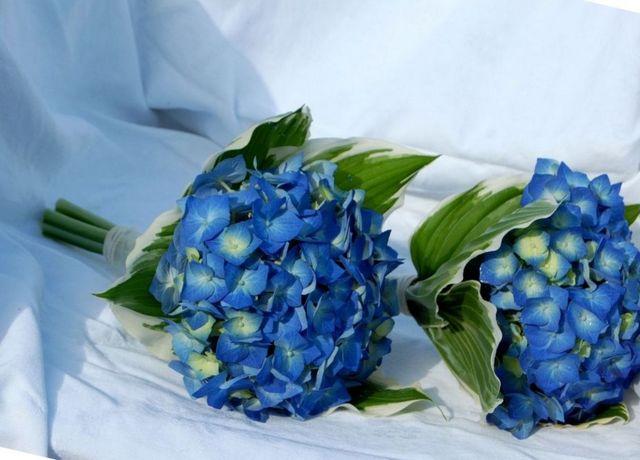 bridal bouquets hydrangeas