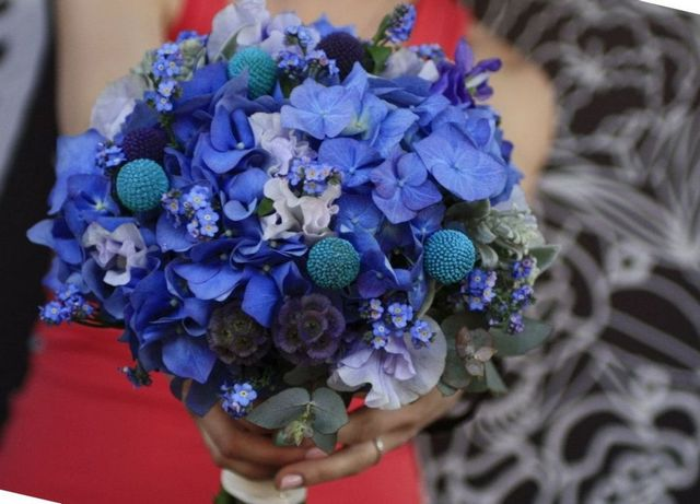 hydrangeas for bridal bouquets