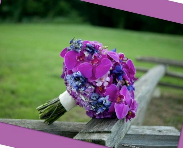 purple hydrangeas wedding bouquet