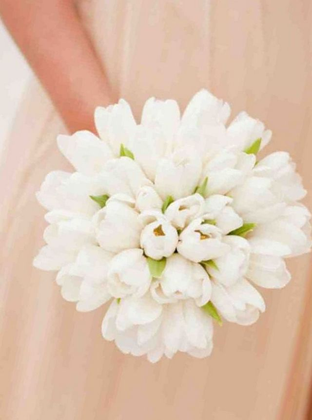 wedding bouquet white tulips picture