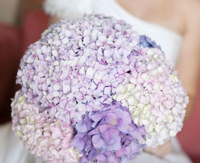 wedding bouquets made hydrangeas