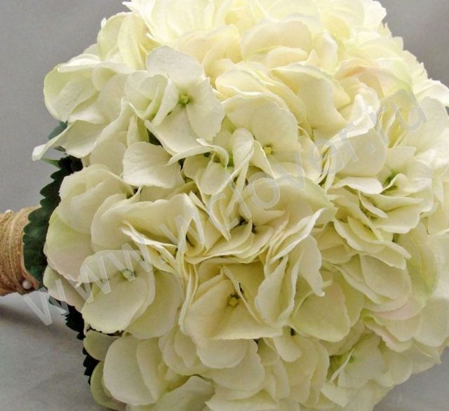 wedding bouquets using hydrangeas